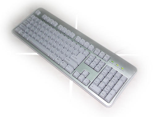 8841 Standard Keyboard, 8881 Ergonomic Keyboard